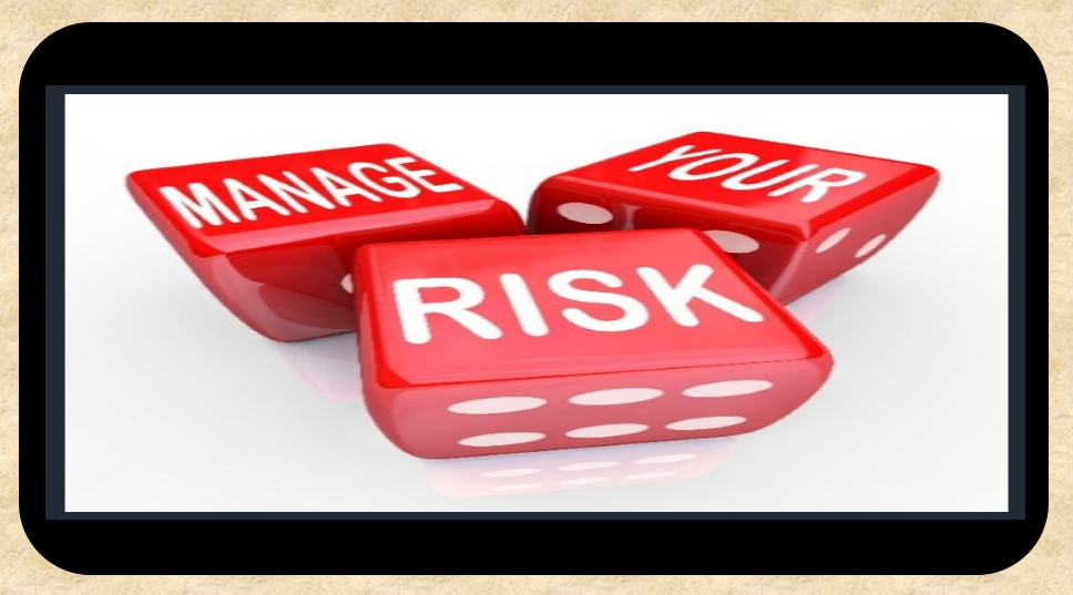 Modules for Risk management system