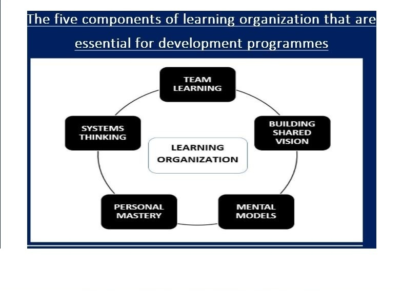 The five learning elements of organization